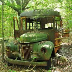 Abandoned green school bus with probably dog pee on the left frontwheel. Abandoned Cars, Abandoned Buildings, Abandoned Places, Abandoned Vehicles, Vintage Trucks, Old Trucks, Antique Trucks, Automobile, Rust In Peace