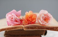 Roses on the Pages of a Vintage Book
