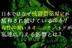 日本ではなぜ残留農薬規定が緩和され続けているのか?毒性の強いネオニコチノイドが私達に与える影響とは。 Toxic Foods, Nihon, Wellness, Movie Posters, Healthy, Film Poster, Health, Billboard, Film Posters