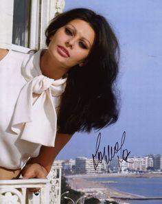 sophia lorens chocolatey hair - Sophia Loren Hair Color