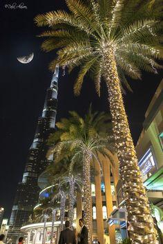 Experience Dubai City Tour with Top Tour Itinerary. Visit Old & Modern Dubai Sightseeing Attractions like Museum, Burj Khalifa, Burj Al Arab, Atlantis, Palm Night Aesthetic, City Aesthetic, Travel Aesthetic, Dubai City, Dubai Hotel, Dubai Uae, Dubai Travel, Luxury Travel, Applis Photo