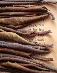 stitched leaves in old book (by Heidi Soos - Highland Fairy)
