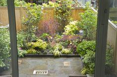 masculine courtyard garden 3