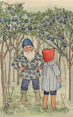A Polar Bears Tale: Around here it is time for blueberries.... In Deutsch: Hänschen im Blaubeerwald
