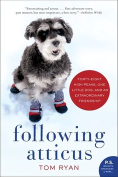 Following Atticus by Tom Ryan | 14 Nonfiction Books Your Book Club Needs To Read Now