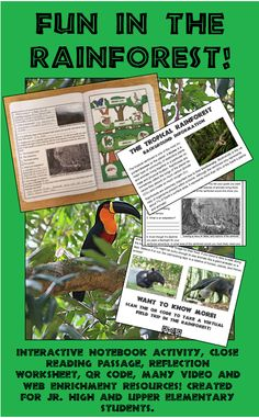 Great interactive notebook activity for middle grades and upper elementary. Fun cut and paste activity reinforces knowledge of rainforest layers and typical wildlife found in each layer. A close reading passage, reflection worksheet, virtual field trip QR code, and lots of links and teacher resources round out this engaging lesson.