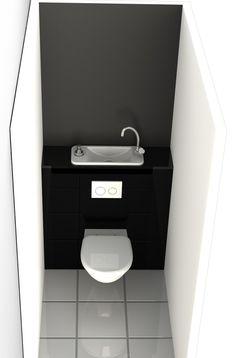 Wall mounted sink/loo