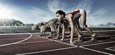 """Stefano Pepe @jimmy3dita e le #startup in Italia, serve solo un po' di competitività: """"Prima di andare a sbattere sul muro di tasse e difficoltà di finanziamento, ci sono decine di problemi da affrontare, andando ad intaccare risorse in termini di tempo e denaro. Risorse che vengono sottratte dal prodotto, la cura dei clienti e lo sviluppo del business."""""""
