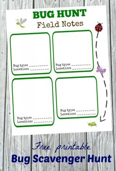 FREE Bug Hunt Activity -- great DIY idea for learning about nature and insects!