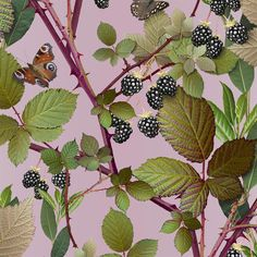Michael Angove's Hyper-Real Chinoiserie. Blackberry, one of two wallpaper designs created for Jo Malone.