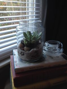Mini terrarium out of old candle jars. The succulent I chose was Moonglow and first I set the plant in the middle of the jar and placed pebbles first and then sand around it. This particular succulent needs well draining soil which is why I chose to supplement what it already had from the pot with sand. I've kept it open so it does not get too wet or humid. And voila a beautiful touch.