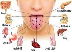 A nyelved, olyan, mintha a tested térképe lenne! - Nyugdíjasok