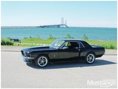Kristie's Dream 1967 Ford Mustang