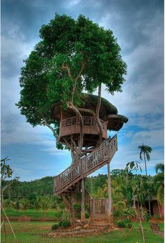 Love a good treehouse