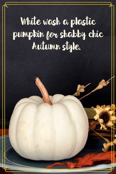 White-wash pumpkins for shabby chic Autumn style. Update old orange foam or plastic pumpkins and give them new life. Plastic Pumpkins, Foam Pumpkins, White Pumpkins, Painted Pumpkins, Autumn Activities, Activities For Kids, Painting Plastic, Autumn Style, Easy Family Meals