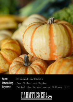 Ein hübscher Back- und Füllkürbis. Deckel auf, Kernen raus, Füllung rein und dann im Ofen oder in der Mikrowelle garen. Zum Rezept geht's hier lang! Pumpkin, Vegetables, Food, Carving Pumpkins, Popular, Oven, Recipies, Pumpkins, Essen