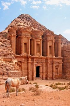 The Monastery (Al Dier), Petra, Jordan. A gateway to Jordan, Amman is a modern city, and one of the easiest in which to enjoy the Middle East experience. Here is what to expect. City Of Petra, In Dubai, Jordan Photos, Jordan Travel, Wadi Rum, Ancient Ruins, Mayan Ruins, Ancient Greek, Best Hikes