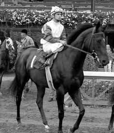 2 year old Ruffian as she walked onto the track for the Spinaway Stakes. She won the race by 12&3/4 lengths and in a record time of 1:08 3/5.
