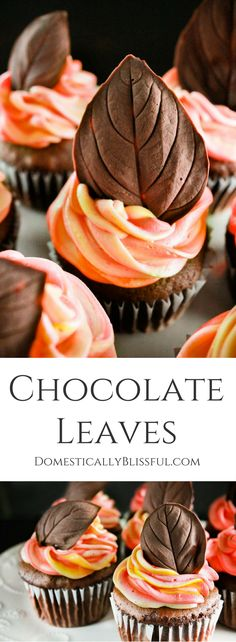 Chocolate Leaves are a fun & a delicious way to top your festive fall cakes & cupcakes this season. | chocolate leaf | dark chocolate leaf | fall leaf | autumn leaf | edible craft | edible leaf | mint leaf | basil leaf | fall cupcakes | autumn cupcake | decorative cupcake | decorate cupcakes | fall frosting | decorated cupcake | fall colors | chocolate cupcakes | colorful frosting | rainbow frosting | fall icing | recipe | easy | quick |