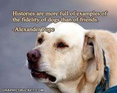 .dog quote