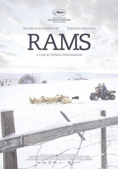 Rams (El valle de los carneros) (2015) - FilmAffinity