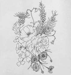Thistles and poppies? Thigh tattoo.