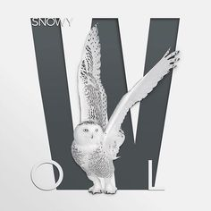 Bubo scandianus. . . #honestwork #infographic #meanincfographic #illustration #negativespace #minimalism #minimal #animal #art #paper #papercut #concept #combination #style #experiment #papercraft #light #shadow #whitespace #typography #fonts #lettering #simple #frame #owls #owl #snowyowl #blackandwhite #grey #w