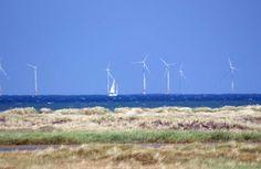 Unterwegs auf dem Rundweg Darßer Ort im Nationalpark Vorpommersche Boddenlandschaft | Windpark Baltic 1 in der Ostsee nördlich vom Darß (c) Frank Koebsch