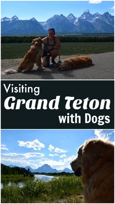 As part of our Dog Friendly Road Trip, we visit Grand Teton National Park. Check out our post to learn more about exploring the park and surrounding area with dogs.