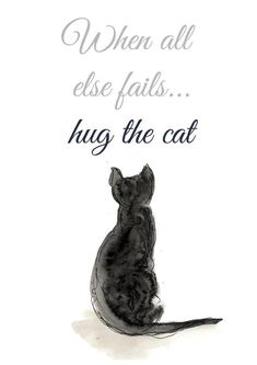 You notice that we collect always funny, hilarious and humor picture who's make you laugh. Like every time, Today we collect some Funny Quotes Cats.Read This 25 Funny Quotes Cats 25 Funny Quo… Cat Lover Gifts, Cat Lovers, Funny Cats, Funny Animals, Family Wall Art, Cat Facts, Baby Cats, Beautiful Cats, Crazy Cat Lady