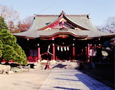 The precincts of the shrine are colorfully adorned with Japanese wisteria in the spring and chrysanthemums in the autumn. The kiku-ningyo, which are dolls made with chrysanthemum flowers, are exquisite and overwhelming.