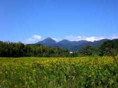 菰野町千草地区 御在所岳を望む  平成24年10月7日早朝撮影