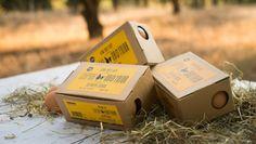 Turning eggshell waste into eggsellent packaging