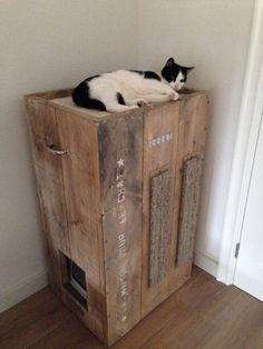 Een kattenhuis, met een krabpaal, een kattentoilet en een mandje. Allemaal in een. Gemaakt van pallets