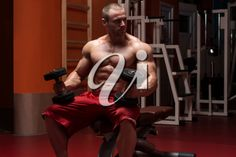 Young Bodybuilder Working Out Biceps - Dumbbell Concentration Curls