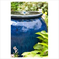 GAP Photos - Garden Plant Picture Library - Bubble fountain in a blue glazed ceramic pot with Hosta leaves. - GAP Photos - Specialising in horticultural photography