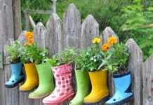 New Ways of Flower Gardening