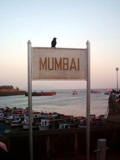 The Mumbai City                                                       …