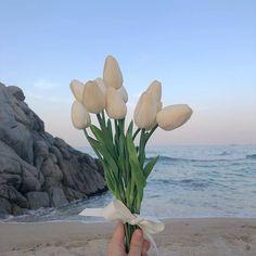 Light Blue Aesthetic, Flower Aesthetic, Aesthetic Photo, Aesthetic Pictures, Photography Aesthetic, Arte Peculiar, Isak & Even, White Tulips, Yellow Roses