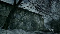 PARANORMAL WITNESS /  The Curse of the Lonergan Farm (Tim Dale's Wife)