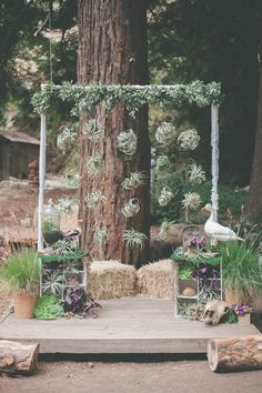 air plant ceremony backdrop, photo by Evynn LeValley http://ruffledblog.com/henry-miller-library-wedding #backdrops #airplants