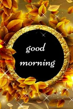 Top Good Morning Images, Good Morning Images For Whatsapp, Best Good Morning Images, Good Morning Quotes Good Morning Cutie, Good Morning Clips, Very Good Morning Images, New Good Night Images, Good Morning Beautiful Pictures, Cute Good Morning Quotes, Good Morning Picture, Morning Pictures, Sunday Morning