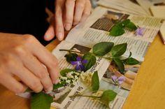 Blumen pressen in der Mikrowelle