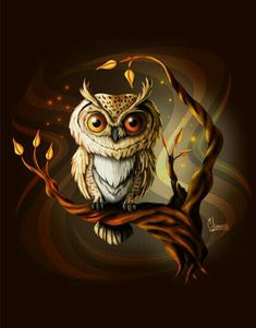 owl drawing, owl art, owl cartoon