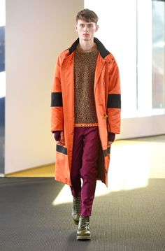 Fall/Winter 2015 collection