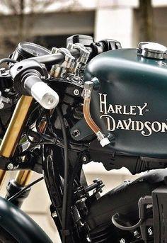 Harley Davidson www.harleygroups.com share your harley #harleydavidsonbobbecaferacers