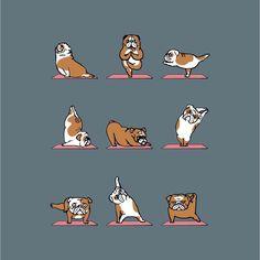 \\ Bulldog Yoga