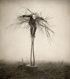 WIL WHEATON dot TUMBLR dot COM - kadrey:  grim-aesthetics:  ❈ Grim Aesthetics ❈ ...