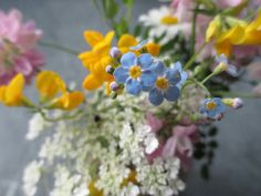 """Picking me a bouquet of dogwood flowers"" --Darius Rucker, Wagon Wheel"