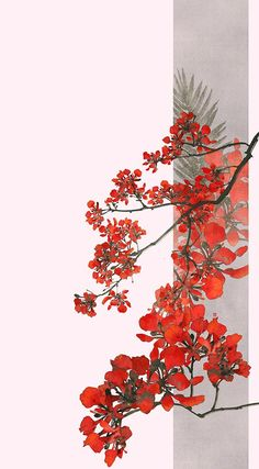Pictures on the wall of the community - photos Flower Backgrounds, Flower Wallpaper, Wallpaper Backgrounds, Tumblr Wallpaper, Aesthetic Iphone Wallpaper, Aesthetic Wallpapers, Bild Tattoos, Japan Art, Pretty Wallpapers